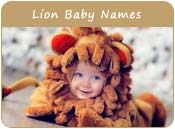Lion Baby Names