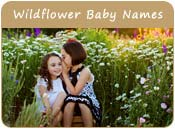 Wildflower Baby Names